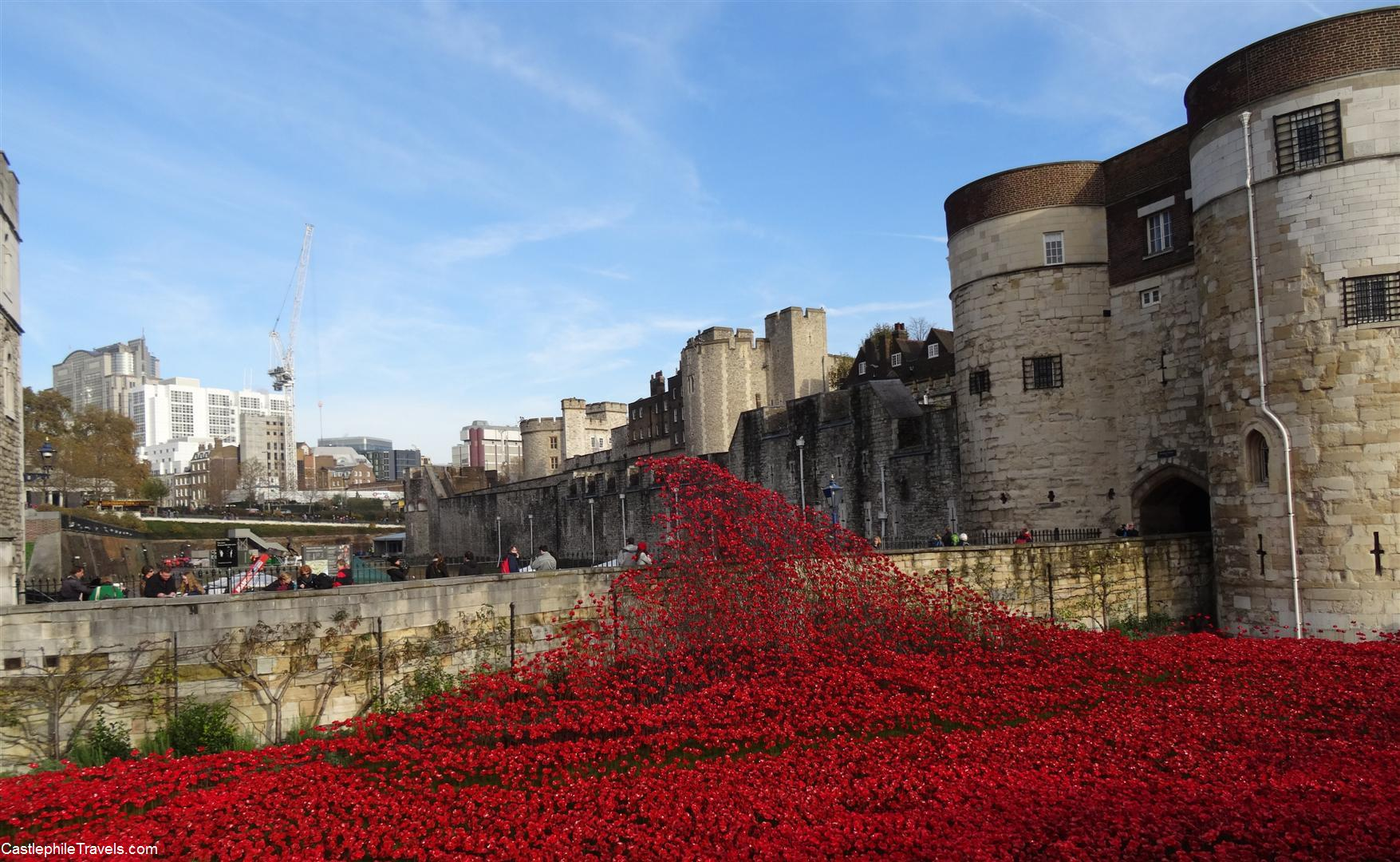 The 'Blood Swept Lands and Seas of Red' art installation at the Tower of London
